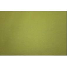 Ensfarvet limegrøn isoli