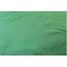 Ensfarvet grøn isoli