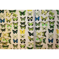 Grønne sommerfugle på råhvid